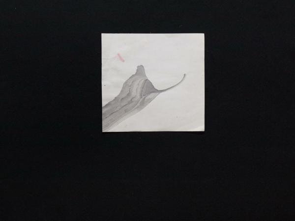 YuOsaki052